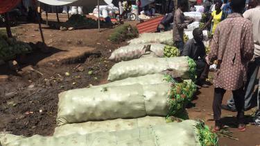 CS-Rwandas-path-middle-income-status-3.jpg