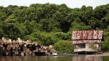 FLAG-Deforestation-Case-Studies-1.jpg